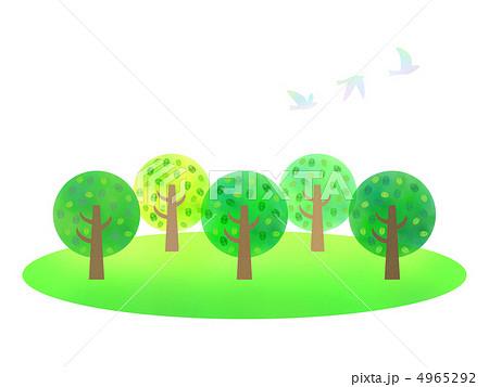 新緑 林 森 木々のイラスト素材 Pixta