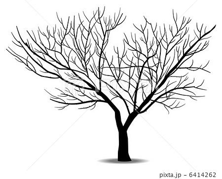 樹木 木 枯れ木 寂しいのイラスト素材 Pixta