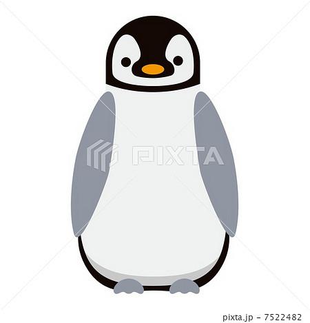 ペンギン カットイラストの写真素材 Pixta