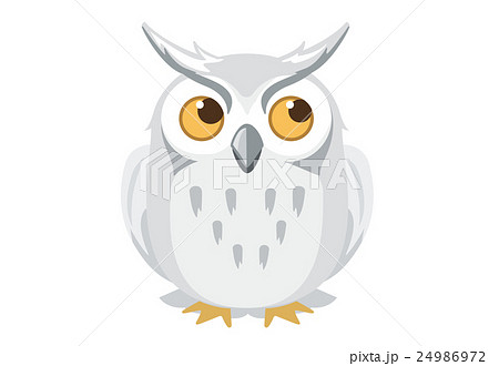 ふくろう 鳥 干支 年賀状のイラスト素材 Pixta