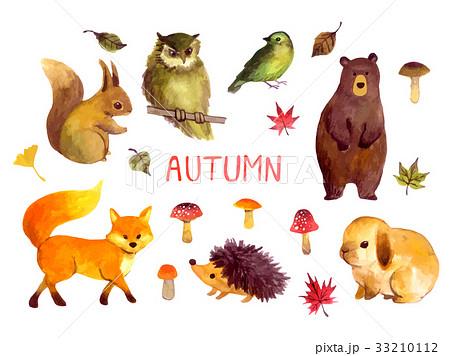 動物鳥のイラスト素材集 Pixtaピクスタ