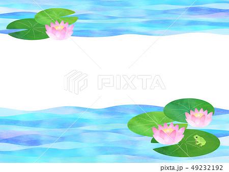 睡蓮のイラスト素材 Pixta